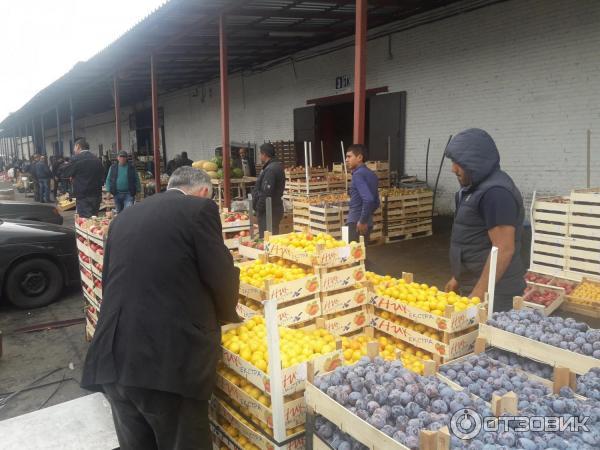 Оптовый рынок на софийской спб