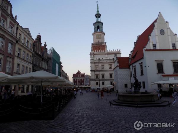 Польша познань проститутки 350