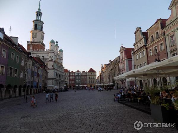 Польша познань проститутки 256