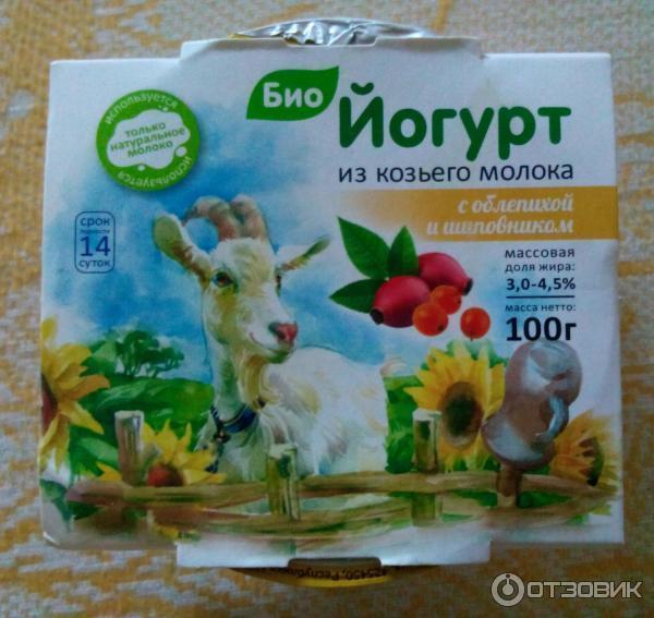 Козий йогурт в домашних условиях 184