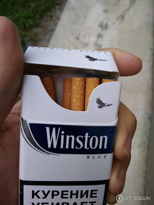 Сколько стоят сигареты winston 2018
