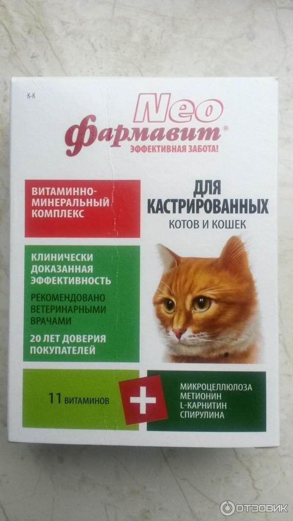 Нео фармавит для беременных и кормящих кошек отзывы 83