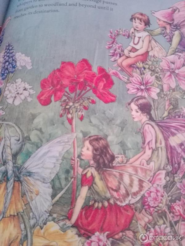 puce fairy book essay Puce fairy book a poem by alice major and forget prince charming a short story by june callwood both discuss the fact that know one or know two people can be perfect.