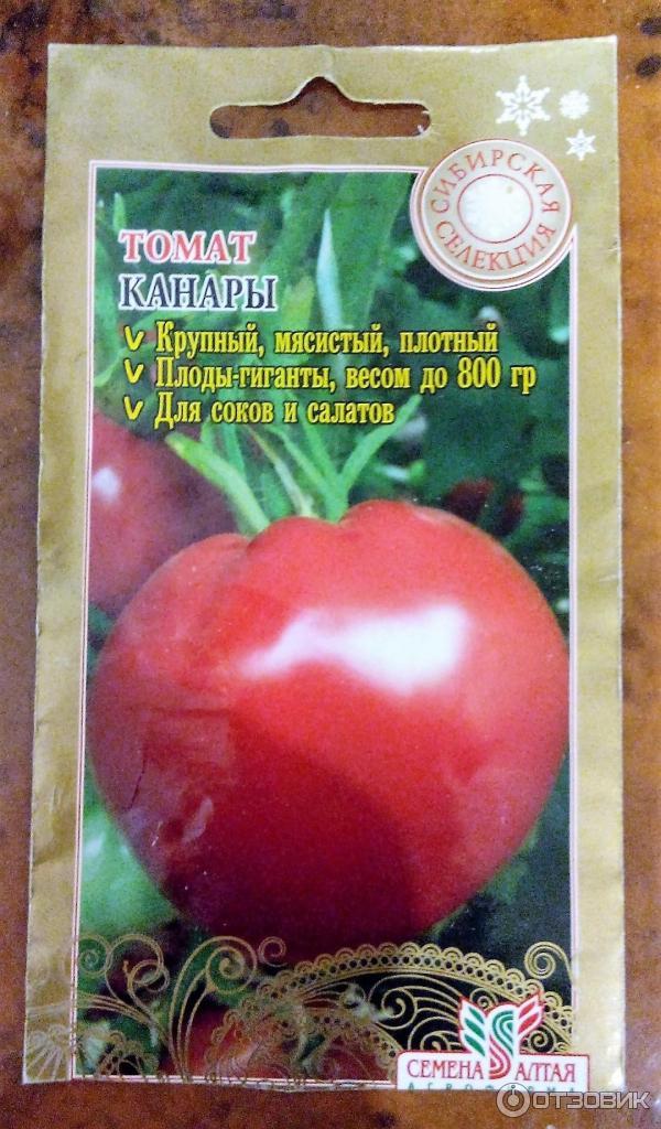 Семена томата Канары