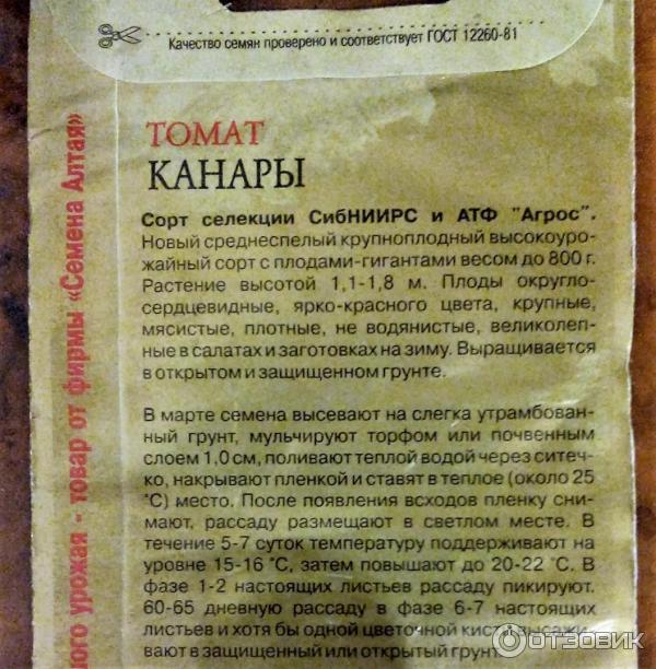 Семена томата Канары фото