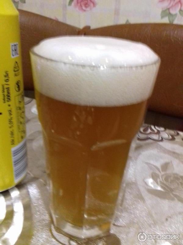 Самое лучшее нефильтрованное пиво
