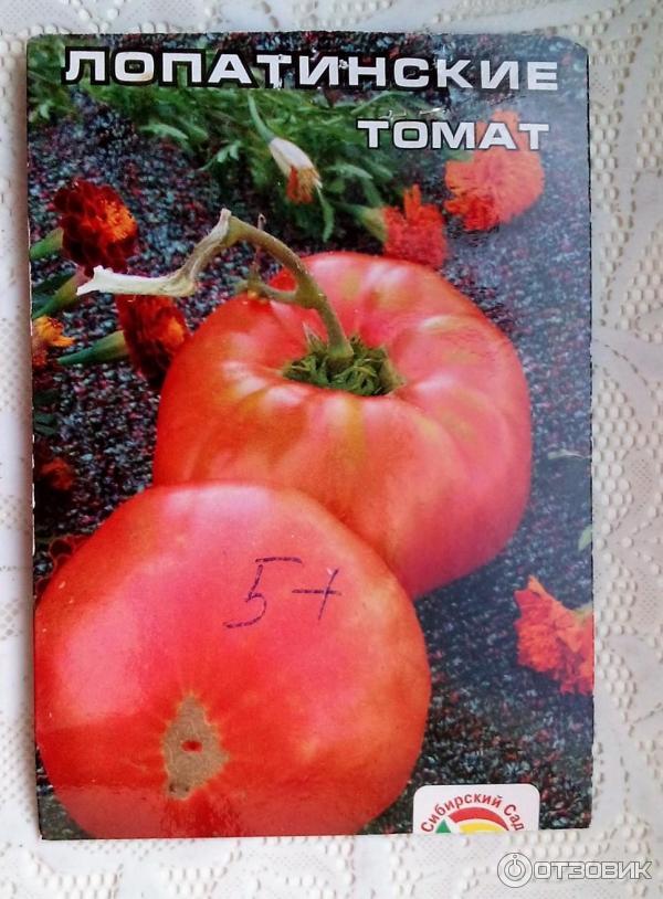 томат Лопатинские