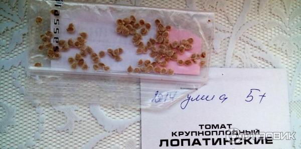 Семена томата Сибирский сад Лопатинские фото