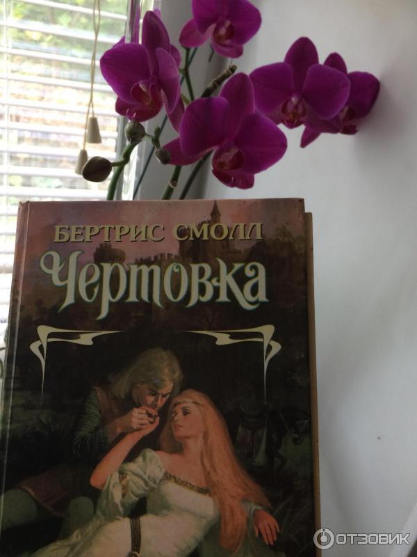 джава книга чертовка бертрис смолл