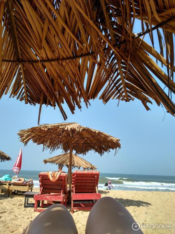 пляж кандолим гоа индия фото ситуация случае материнских