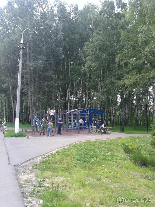 комсомольский парк тула фото