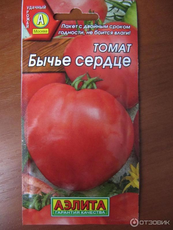 томат бычье сердце отзывы фото как насчет того