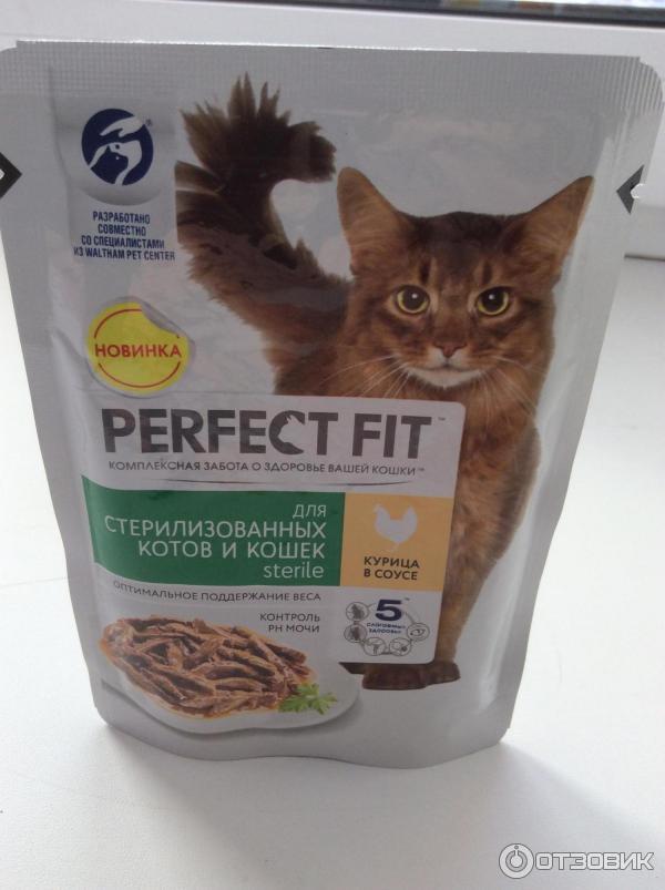 подиумов лишь корм для кошек перфект картинки породе собак