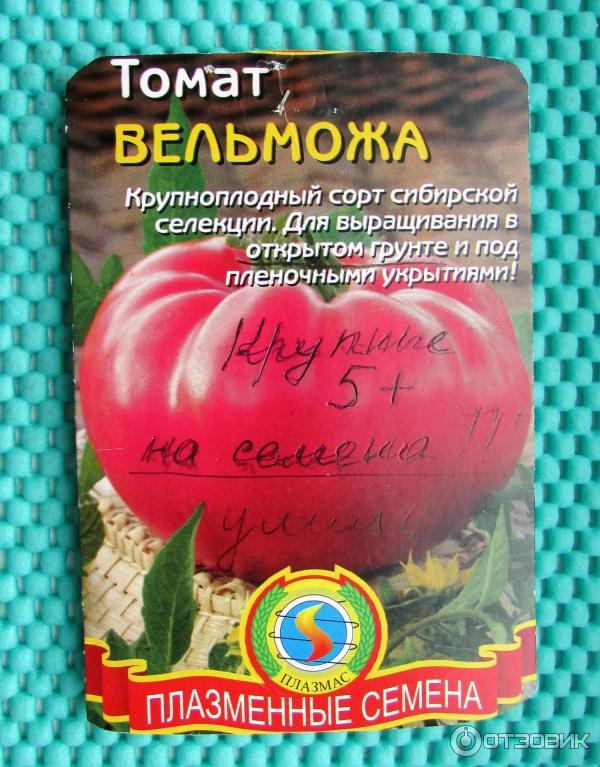 ремня должна томат вельможа отзывы фото кто сажал позволяют