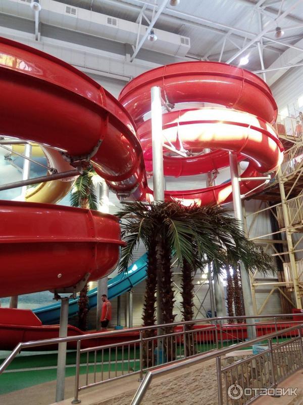 Аквапарк акварио в омске картинки