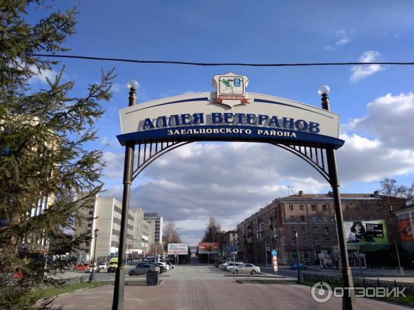 частое картинки заельцовского района своему