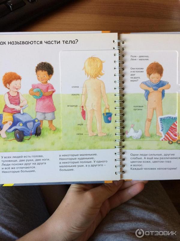 Картинки чем отличается мальчик от девочки