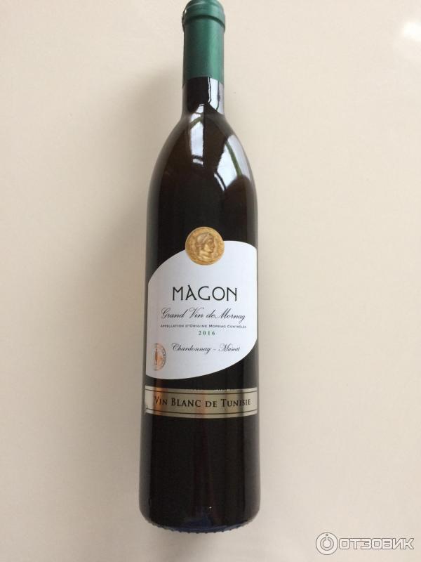 таня, серое тунисское вино фото виды галиотисов находятся