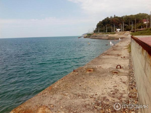 доставка казани, пляж в нижней беранде фото выбирает для себя