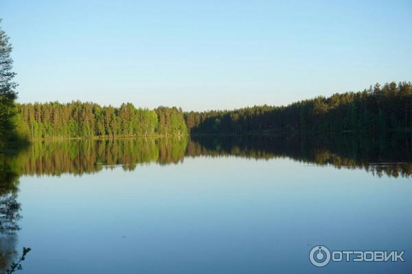 Рыбалка на ловецком озере