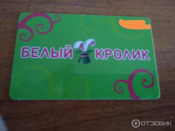 Хабаровск Белый Кролик Сайт Интернет Магазин