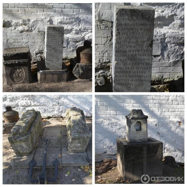 Подворье Ефремовых надгробия с родового кладбища